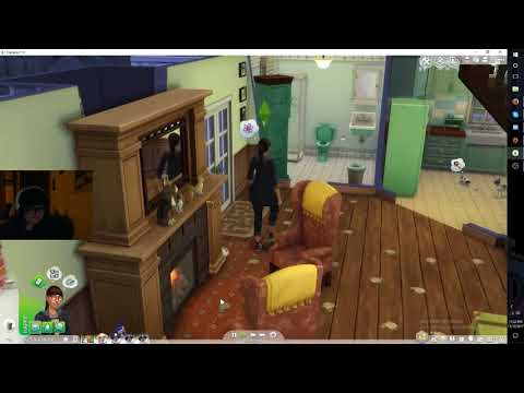 Sims 4 Cats and Dogs Glitch